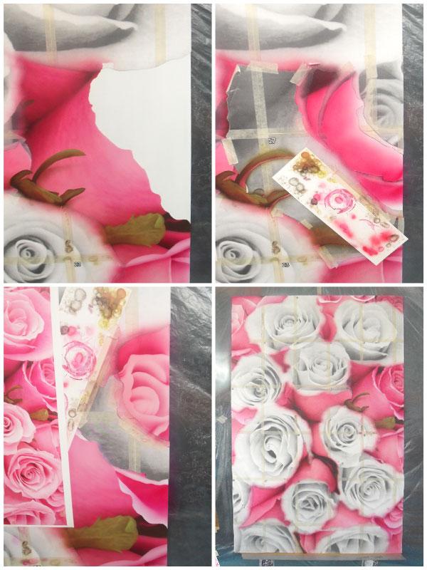 Розы на сэндвич-панели
